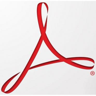 Software, Adobe Acrobat Standart DC (perpetual) v.2015 IE Win AOO (65258978AD01A00)